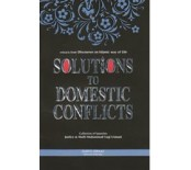 Solutions of Domestic Conflicts